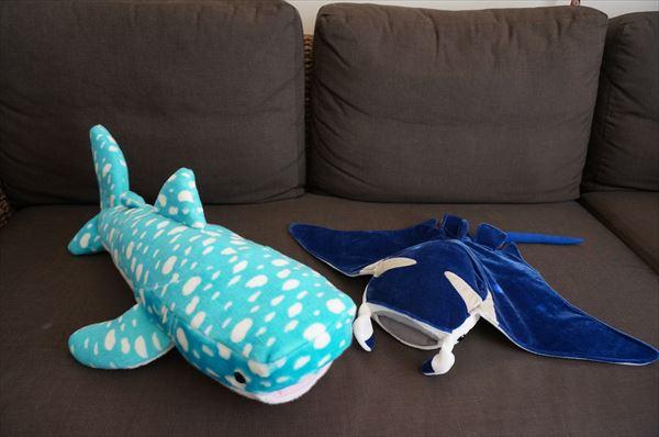 沖縄旅行 美ら海水族館 イルカショー お土産 ジンベイザメ