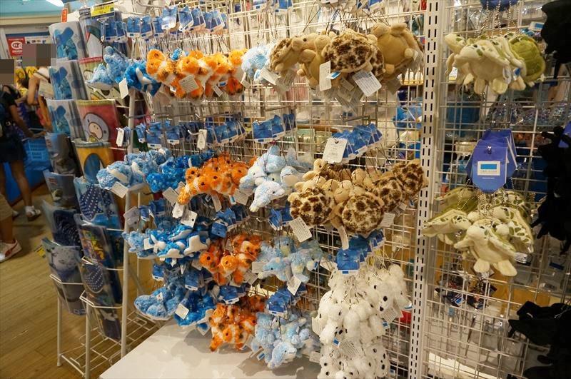 沖縄旅行 美ら海水族館 イルカショー お土産