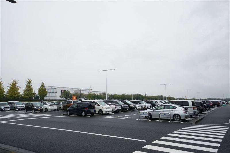 ひたち海浜公園 駐車用 混雑