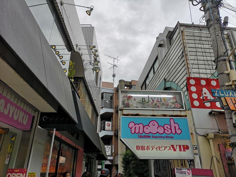 原宿 モッシュ スクイーズ